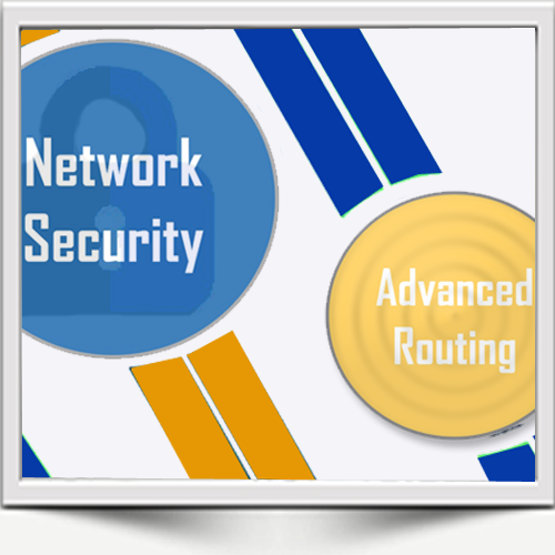 The ANC and APNIC Workshop on Network Security and Advanced Routing